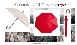 RAINTOP- Banner Promo2